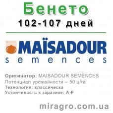 Бенето - классический МАИСАДУР (MAISADOUR)
