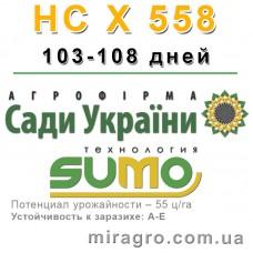 НС Х 558 - под Гранстар (Сады Украины, Сербия)