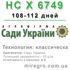 НС Х 6749 - классический