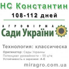 НС Константин - классический (Сады Украины, Сербия)