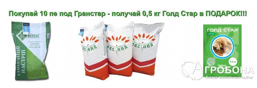 Покупай 10 пе подсолнечника под Гранстар - получай 0,5 кг Голд Стар в ПОДАРОК!!!