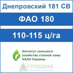 Семена кукурузы Днепровский 181 СВ