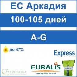 Семена подсолнечника ЕС Аркадия под Экспресс