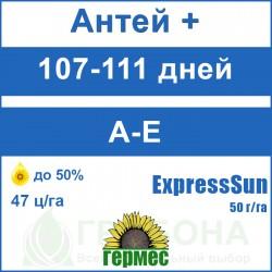 Семена подсолнечника Антей+ (Гранстар 50 г/га)