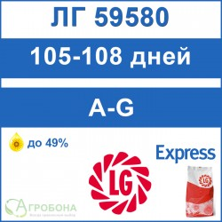 Семена подсолнечника ЛГ 59580 под Экспресс