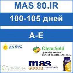 Семена подсолнечника МАС 80.ІР под Евро-Лайтнинг