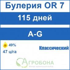 Булерия OR 7