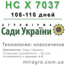 НС Х 7037