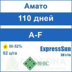 Семена подсолнечника Амато (Гранстар 50 г/га)
