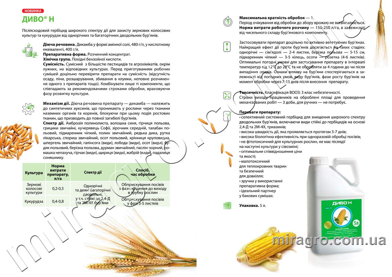 Описание гербицида Диво Н