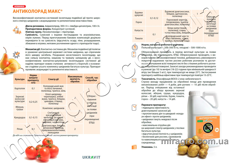 Описание инсектицида Антиколорад Макс