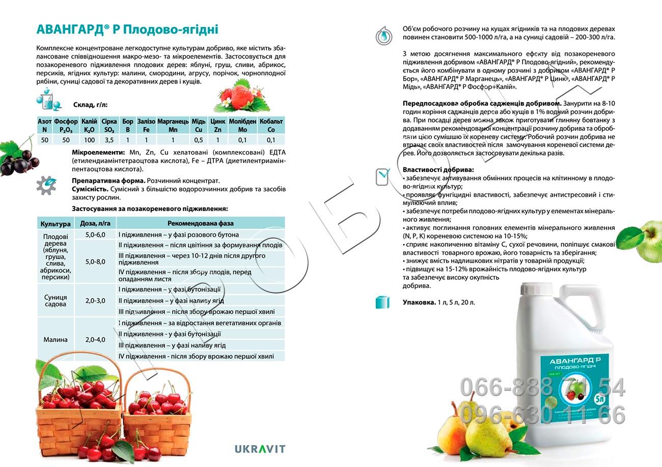 Авангард Р Плодово-ягодные описание