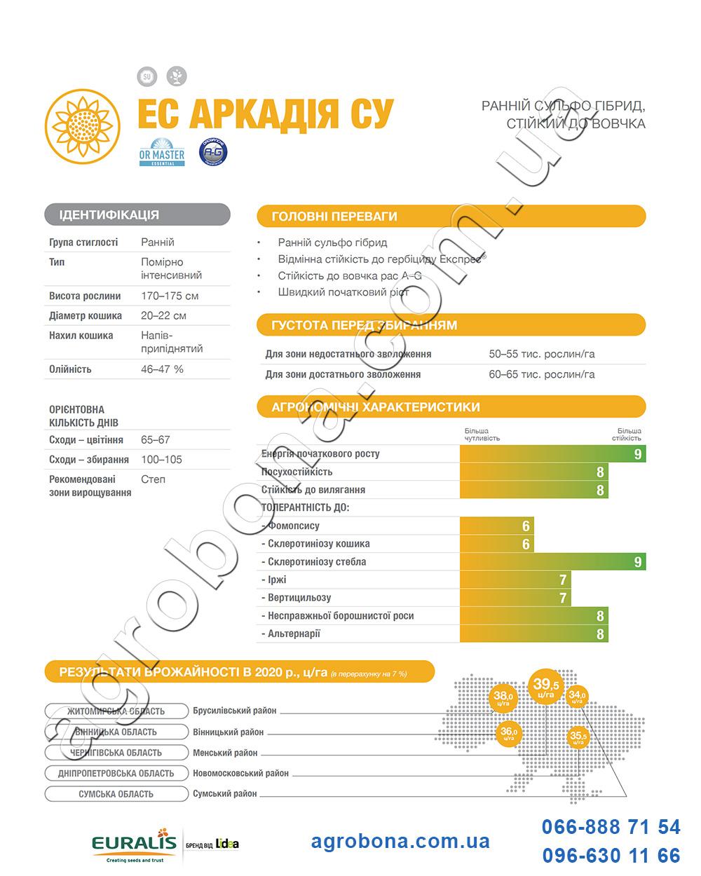 Подсолнечник ЕС Аркадия каталог